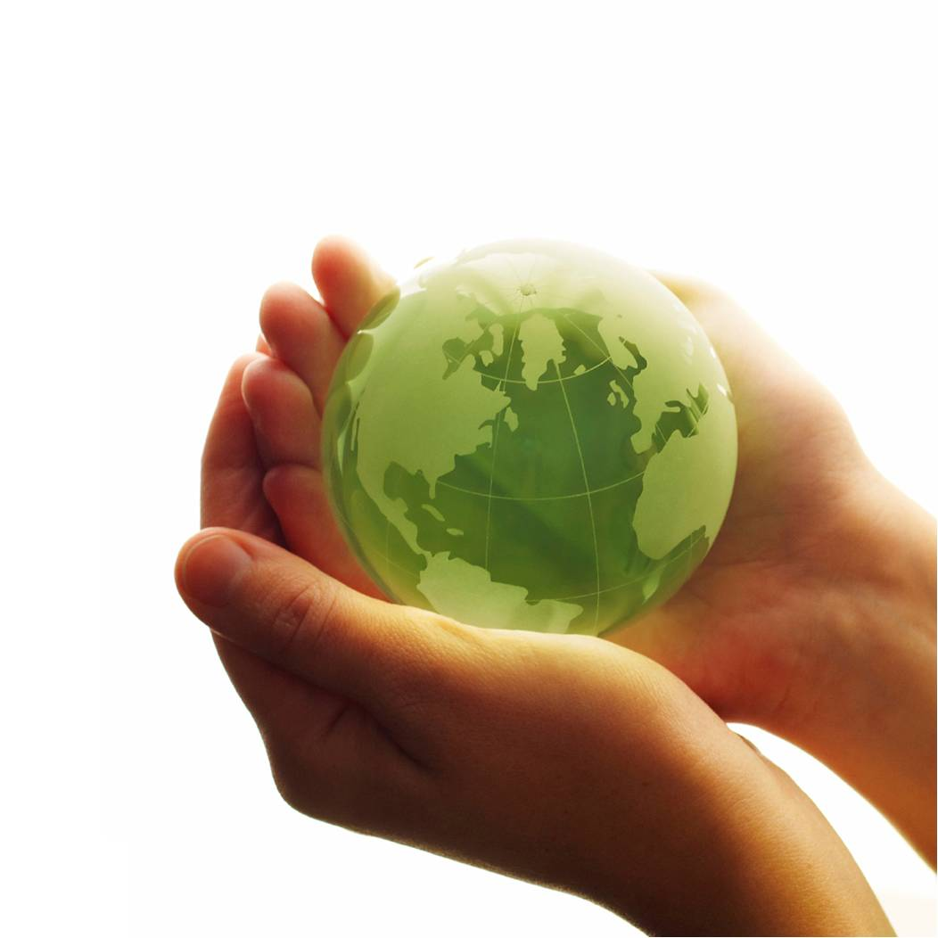 Sustainability - Why Going Green?