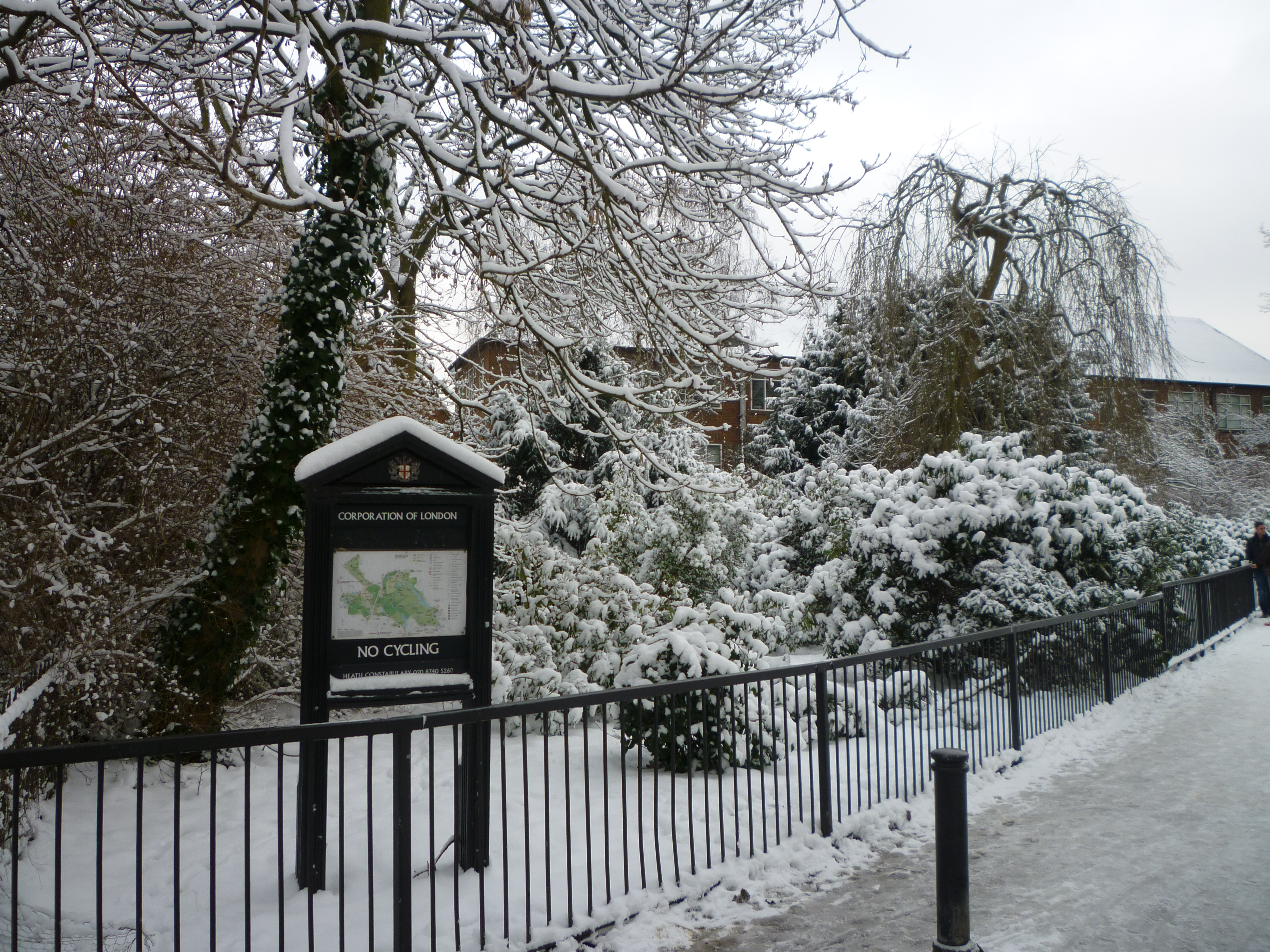 Snowy London - Hampstead Heath1